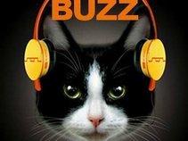 Mews Buzz