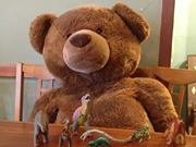 Boppity Bear