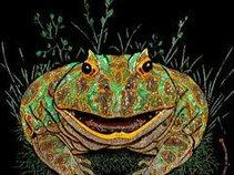 FrogNation