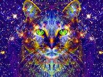 Ezelina Cat