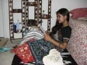Anshika Singh