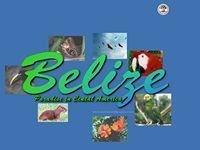 Belize Trip De Pere