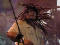 Reggae Rocker