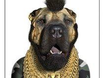 T-Dog