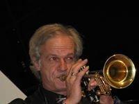 Maurizio Davini