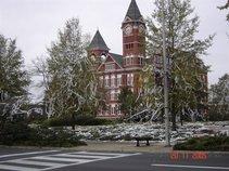 Auburn Magnolia