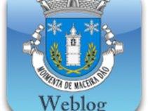 Moimenta do Dão Weblog