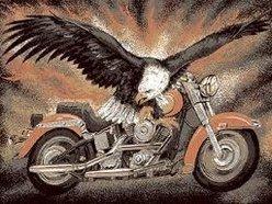 ez_rider
