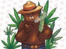 Smokey the Buffalo