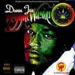 Reggae Wrap