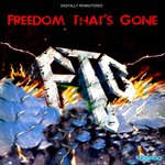 Freedom That's Gone