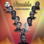 Vizeeble Dance Floor 1