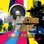 "Blacktree Music Presents ""Soul Seeds, Vol. One"""