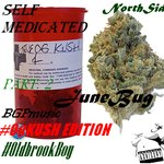 #Self_Medicated Part 2