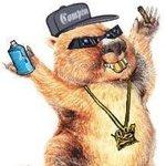 Summer Sampler Hip-Hop