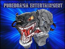 PUREDRAMA ENTERTAINMENT LLC