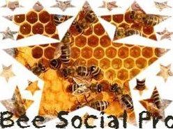 Bee Social Pro