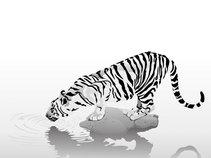 Paper Tiger / Lucero Records
