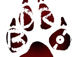 Brown Dog Records