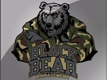 Black Bear Management