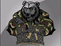 Black Bear Management