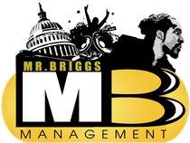 Mr. Briggs