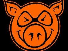 Pigstock  Records