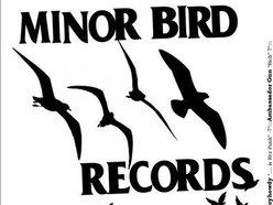 Minor Bird Records