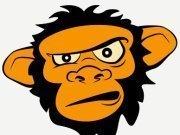 Orange Monkey Records