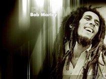 reggae music lovers
