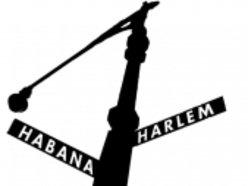 Habana/Harlem®
