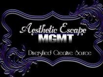 Aesthetic Escape Management