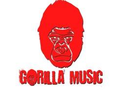 Gorilla Music Management