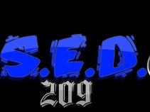 S.E.D Entertainment