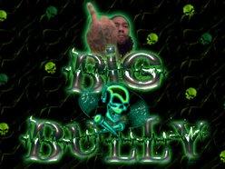 The Big Bully Organization