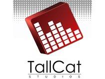 Tall Cat Dan