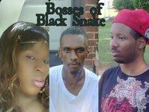 Black Snake Entertainment