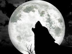 Wolf Entertainment Reno