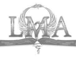 LMA - Business Management & Consulting Services