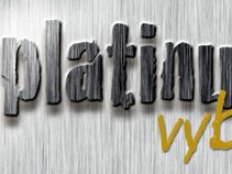Platinum Vybe Recordings