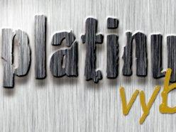 Platinum Vybe Recordings