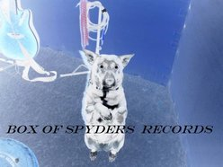 Box Of Spyders Records