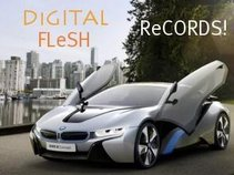 DiGITAL FLeSH ReCORDS LLC