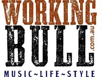 Working Bull Pty Ltd