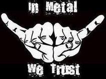 Metalution Management