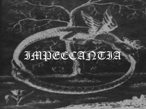 Impeccantia