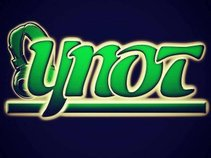 YNOT PROMOTIONS LLC