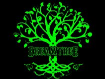 DreamTree Entertainment