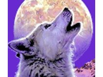 White Wolf Film & Audio Productions