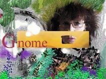 GnomeFest (promo network)